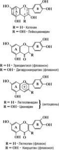 Химическая схема
