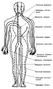 Меридианы в теле