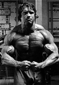 Арнольд - максимальная мускульность