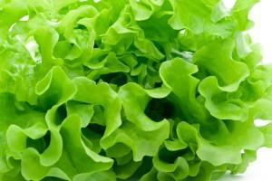 зеленые листовые