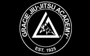 Бразильское Джиу-джитсу Школа Грейси