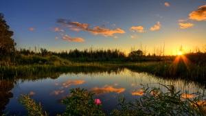 Фото природы HD