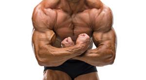 Максимальная мускульность