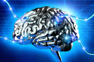 Мозг в виртуальной реальности