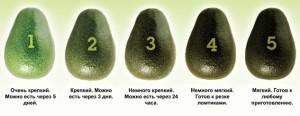 Спелость авокадо
