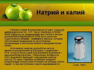 Натрий и калий