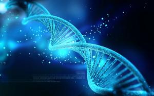 рисунок ДНК