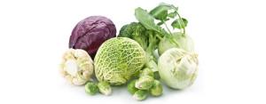 Овощи семейства крестоцветных
