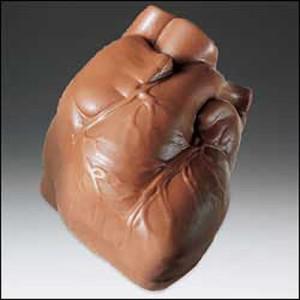 полезное влияние какао на сердце