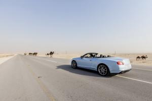 Автомобиль Bentley выиграл гонку со скоростным поездом