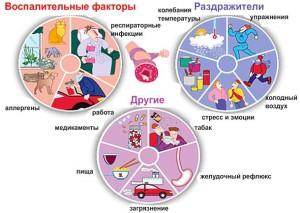 воспалительные факторы бронхиальной астмы