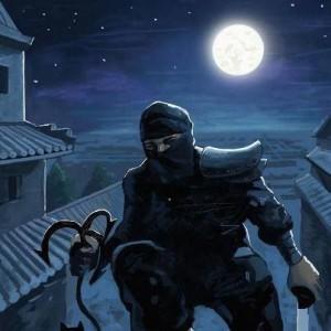 ночной воин