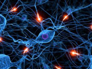 сигналы в мозге