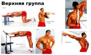 растяжка верхней группы мышц