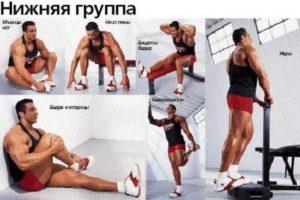 растяжка нижней группы мышц