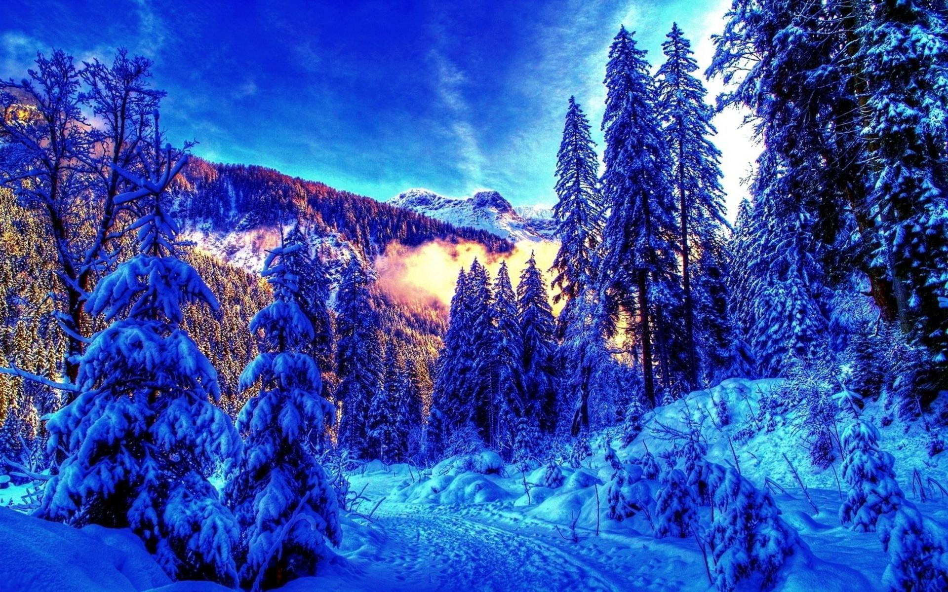 картинки на аву зимние красивые природа оказалось, из-за